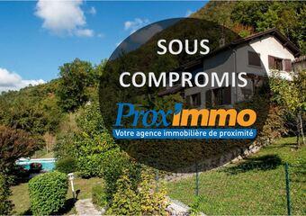Vente Maison 7 pièces 145m² LA BUISSE - photo