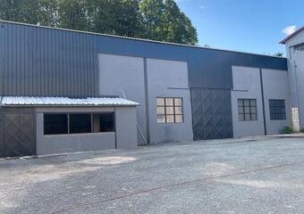 Vente Local industriel 460m² Tullins (38210) - Photo 1